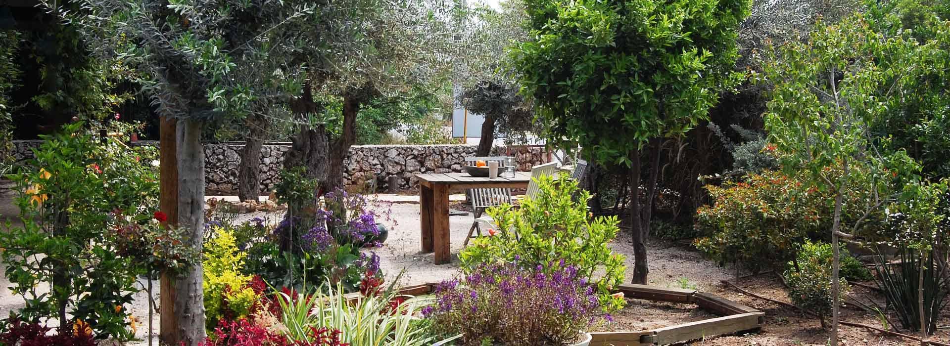 פרגולות וריהוט עץ לגינה