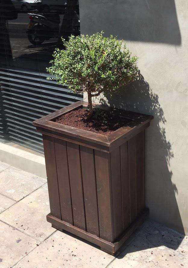 אדניות יפו - אדנית עץ בהתאמה אישית